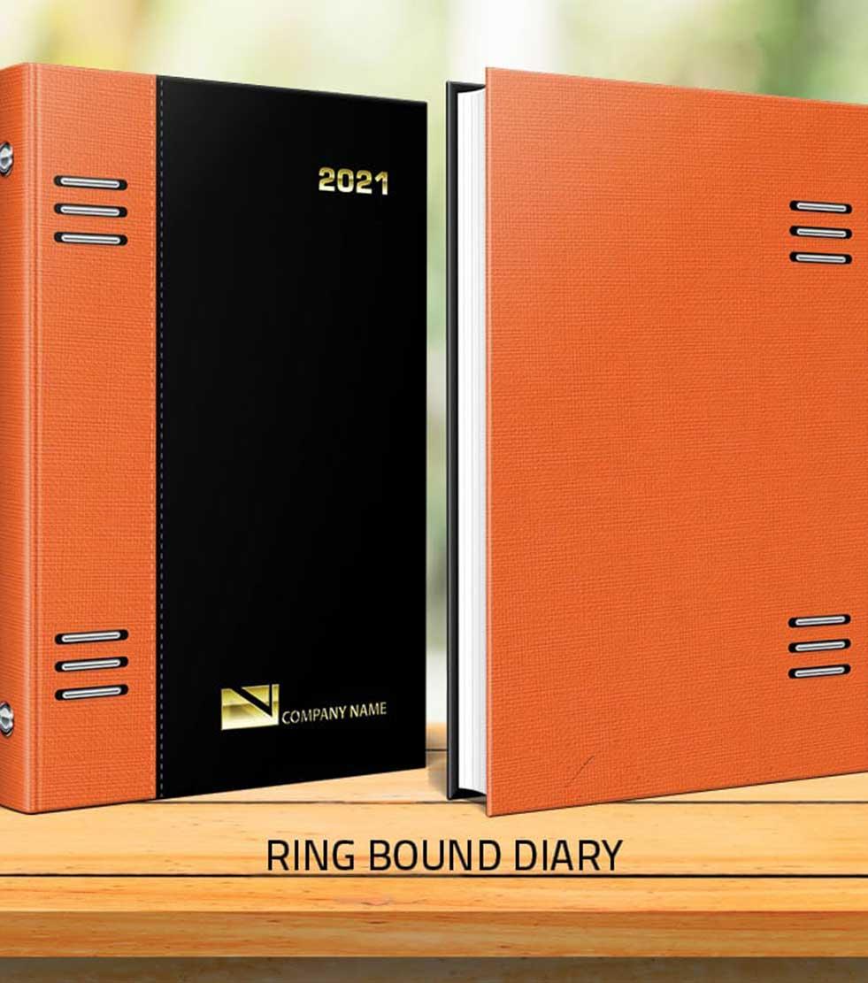 Ring Bound Diaries - Botswana Diaries